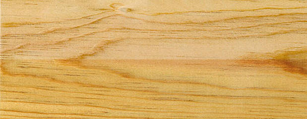 Pitch Pine Holz Profil